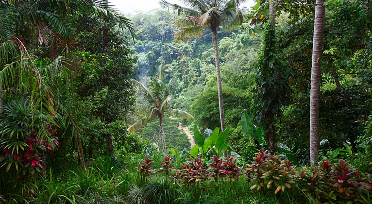 Ubud Villa Bali Gita Located In The Riverside Hills Of Ubud S Scenic Hinterland